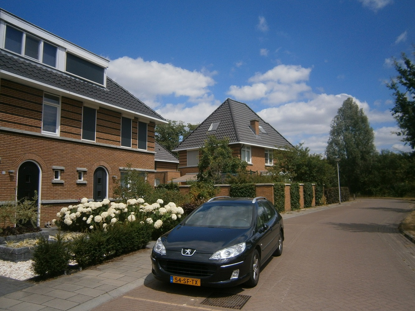 Carel Belstraat.JPG