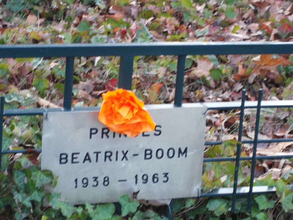 Beatrixboom.JPG